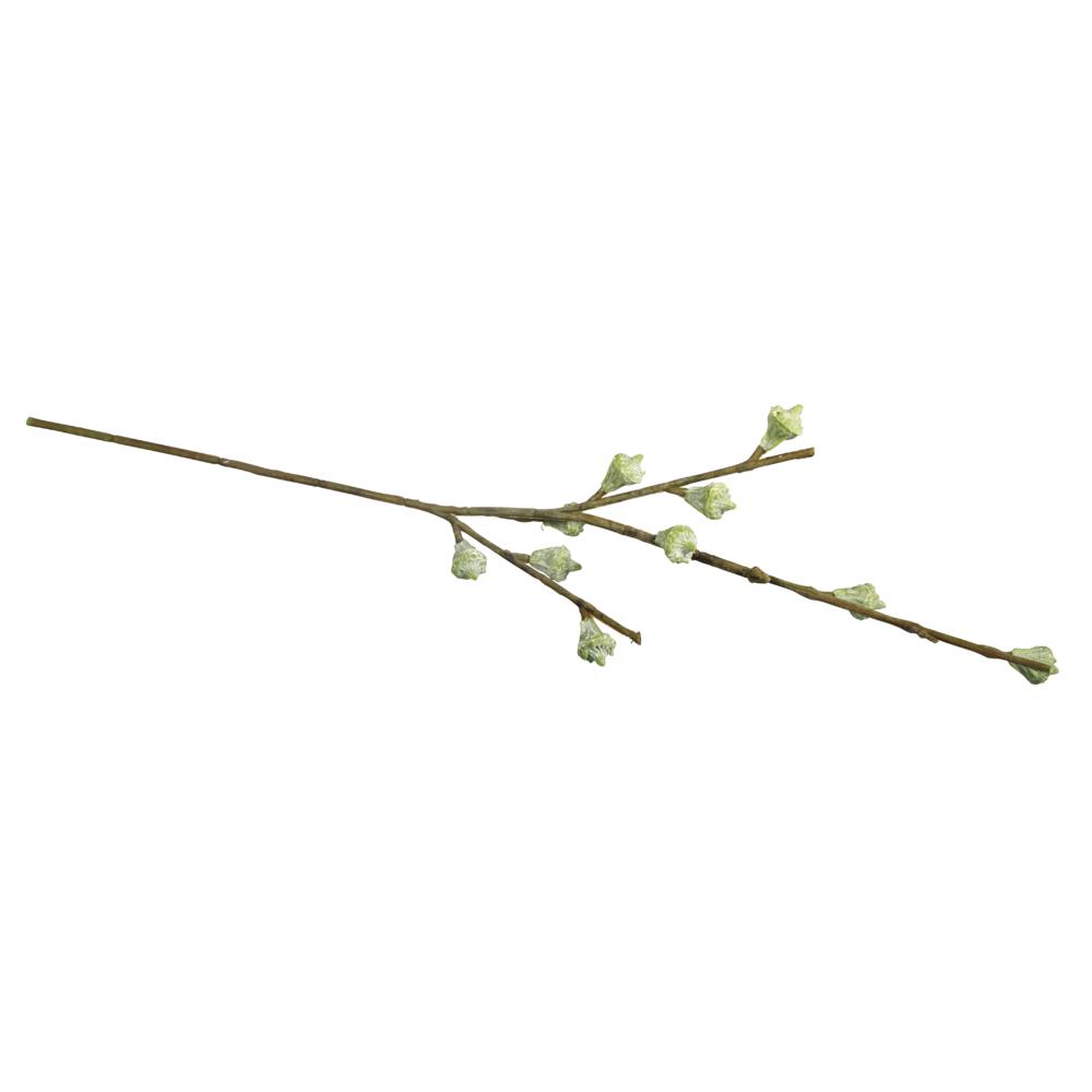 Eukalyptusfrüchtezweig, 40cm