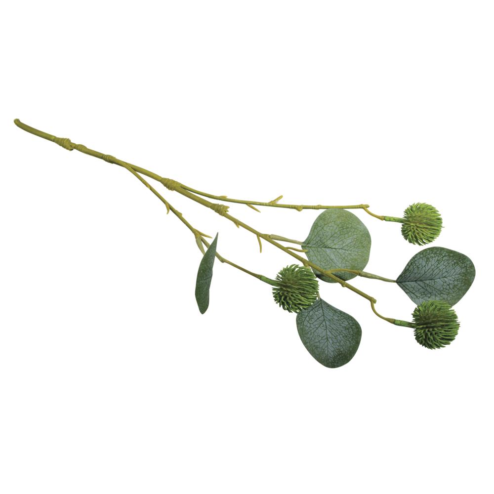 Eukalyptuszweig m. Früchte, 40cm